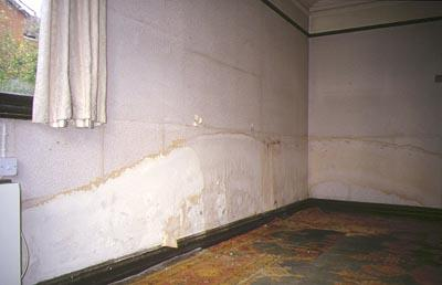 Wall Dampness