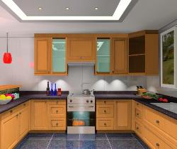 Kitchen Layout and Interiors