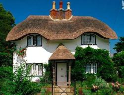 Thatch Roofing 2