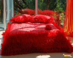Red Bed Cover