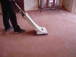 Steam Vacuuming the Carpet