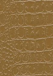 Brown wall texture paint