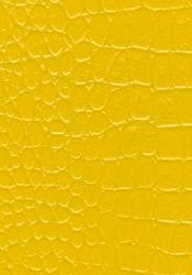 Yellow wall texture paint