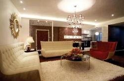 Beautiful Ceiling lighting,furniture and decoration of drawing room
