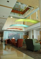 Modern Ceiling in Canopy Style