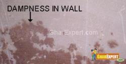 Dampness in Wall