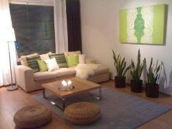 plant in living room