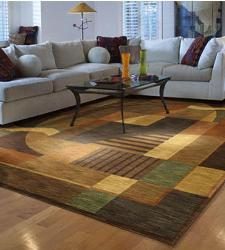 Modern Area Rugs for living room decor