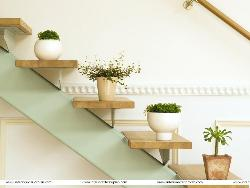 Stairs design and Decoration