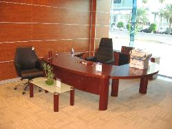 executive Desk &wood Wall covering