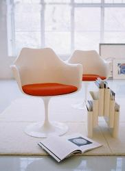 Stylish Chair for Study Room