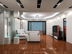 Living Room Ceiling and Flooring