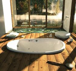 Bathroom design with antique bath tub curve design,