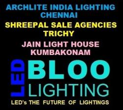 BLOO LED LIGHT