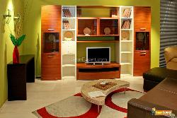 Green living room with big shelf for TV