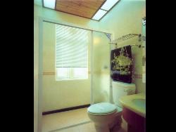 Bathroom ventilation and skylight