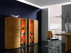 Wardrobe in veneer work'